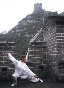 Domy serpent muraille chine